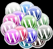 Workshop WordPress in één dag