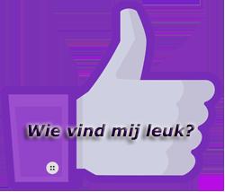 Vind ik leuks bekijken |facebook